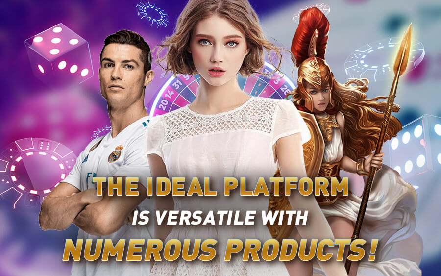 The ideal Online Casino is versatile with numerous products - GamingSoft News