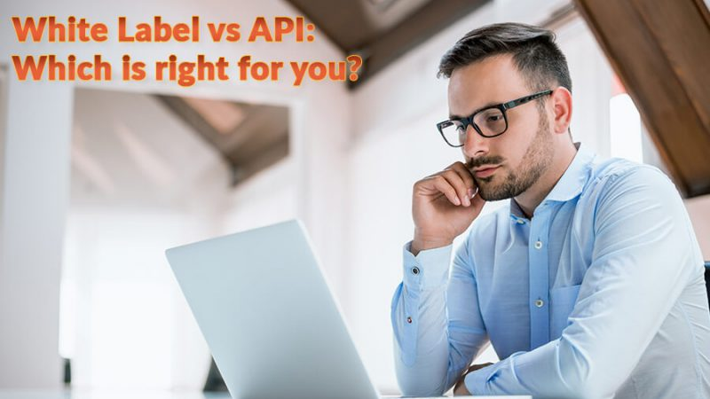 White Label vs API: Which is right for you? - GamingSoft News