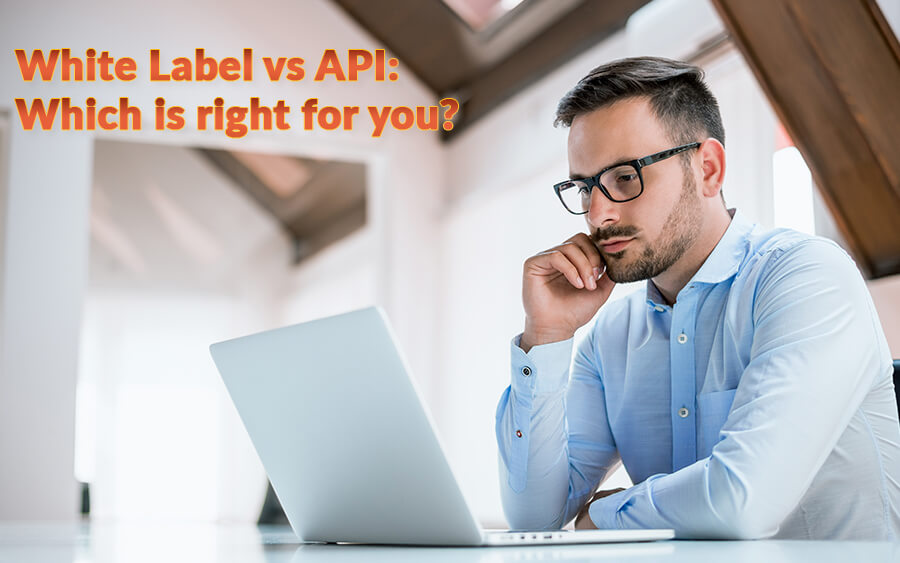 White Label vs API Solution: Which one is right for your casino?